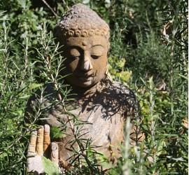 Bouddha Une